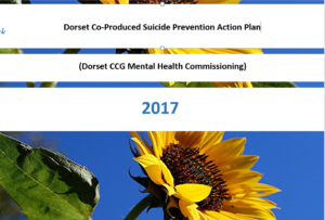 Dorset CCG's Suicide Prevention Plan