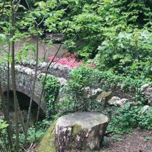 A Woodland Scene In Nature With A Stone Bridge